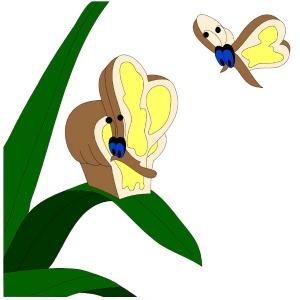 Alice in Wonderland EQ7 Bread & Butterflies