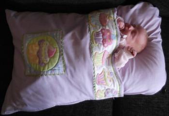 Snuggle Baby Bag